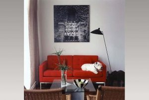 67115ab3096f2771_9117-w618-h417-b0-p0--eclectic-living-room