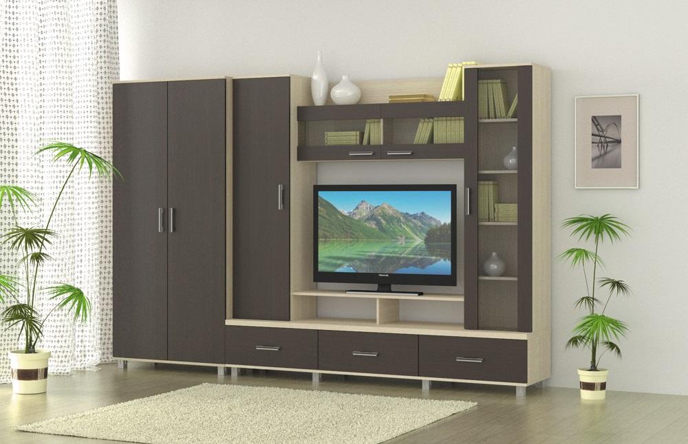 Стандартные модули для стенки в гостиную со шкафом для одежды