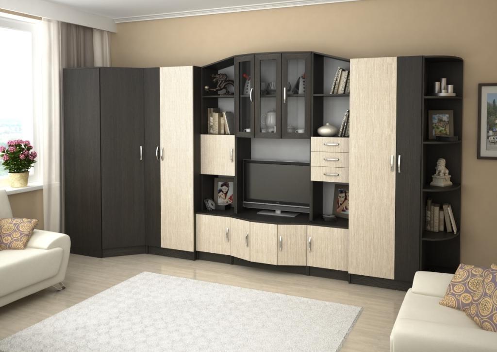 Стенка для гостиной со шкафом для одежды с распашными дверцами