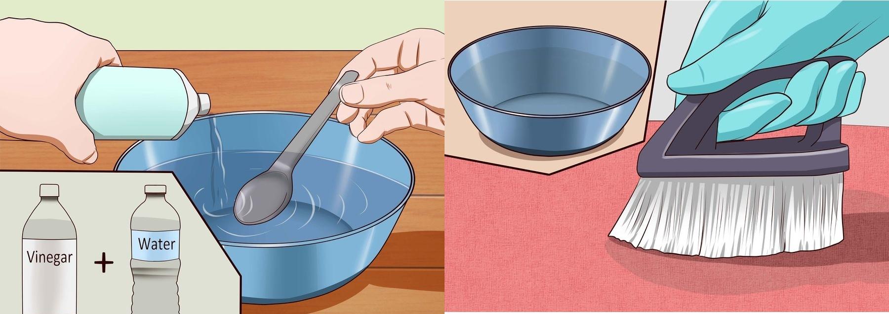 Чистка ковра уксусом и водой от кошачьей мочи