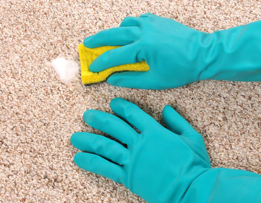 Чистка ковра в домашних условиях губкой