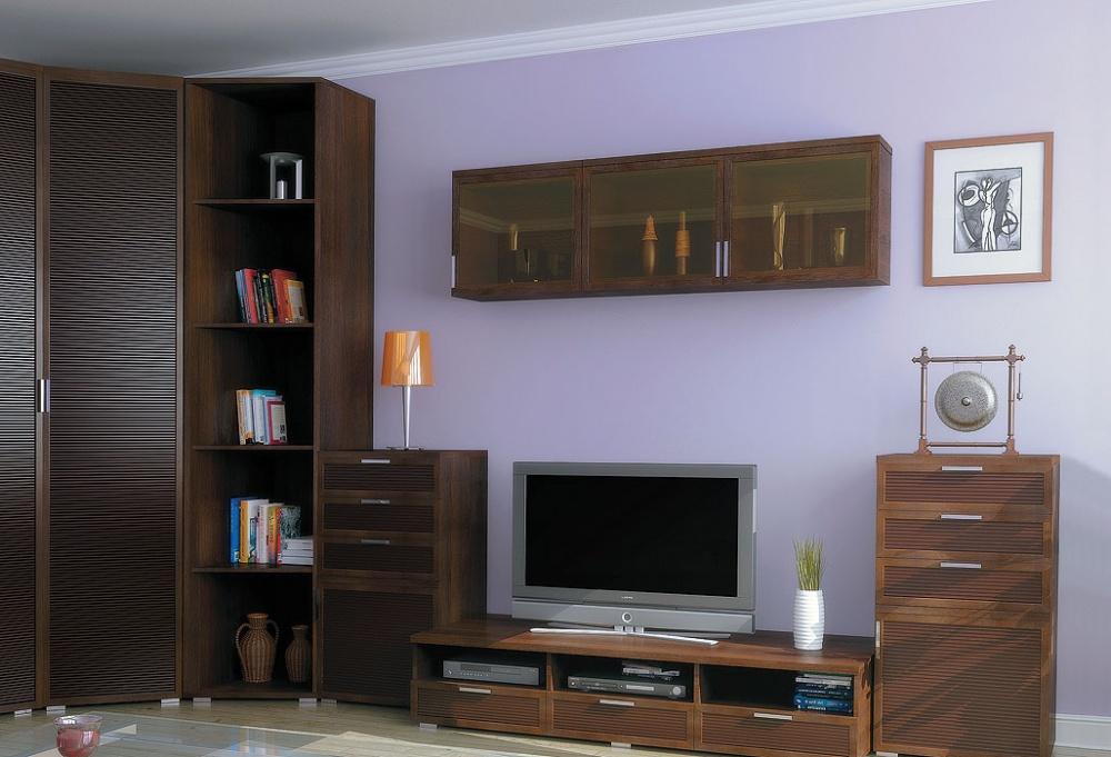 Корпусная мебель в стиле модерн для гостиной