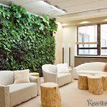 ekologicheskij-stil-v-interere