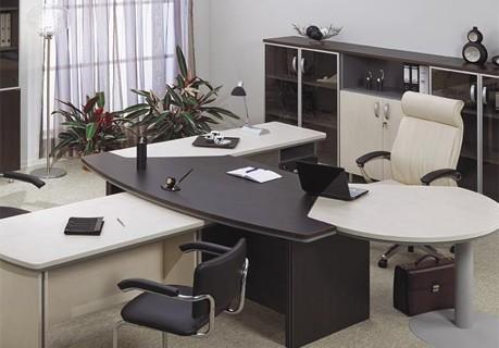 mebel-v-kabinete-rukovoditelya