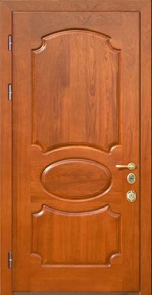 problemy-s-shponovoj-dveryu