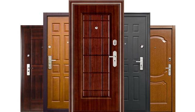 1500499231_vhodnye-dveri-foto
