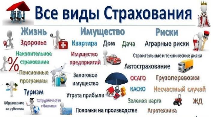 kak-vybrat-zalogovuyu-kompaniyu
